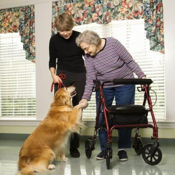 visiting_elderly_parents.jpeg