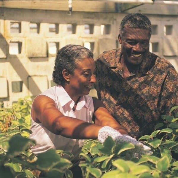 elderly_parents_in_garden.jpeg