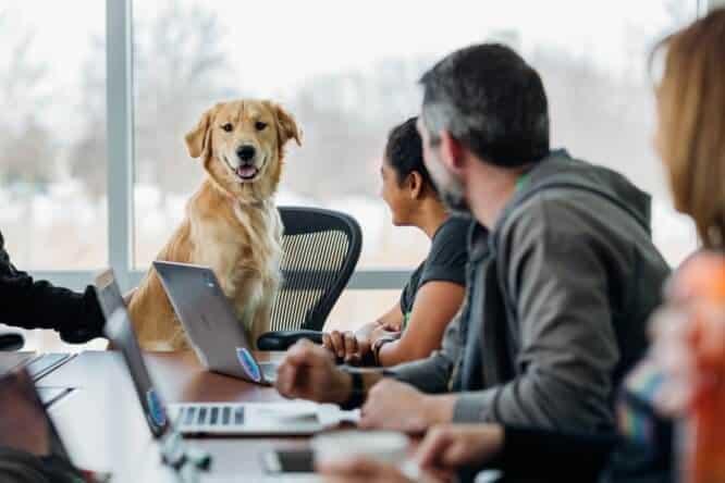 best_laptop_for_senior.jpeg