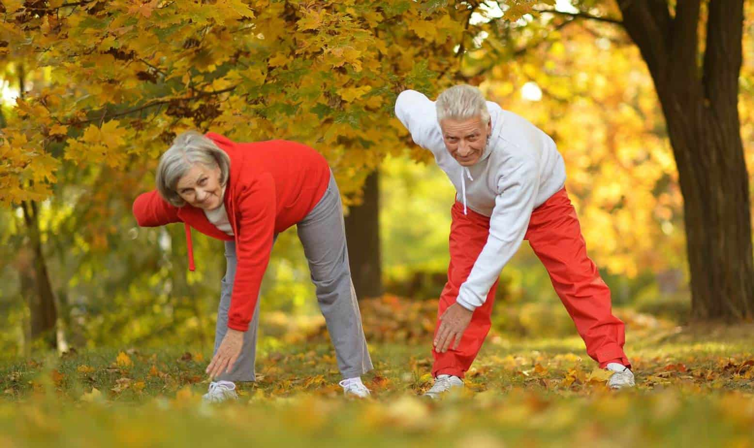 Couple exercising in the park using some posture exercises for seniors