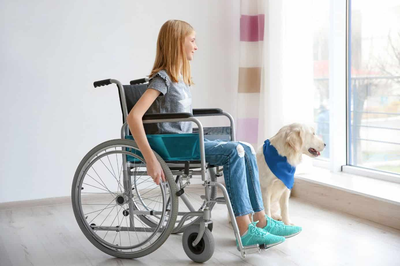 teenager kid in a wheelchair with her white dog
