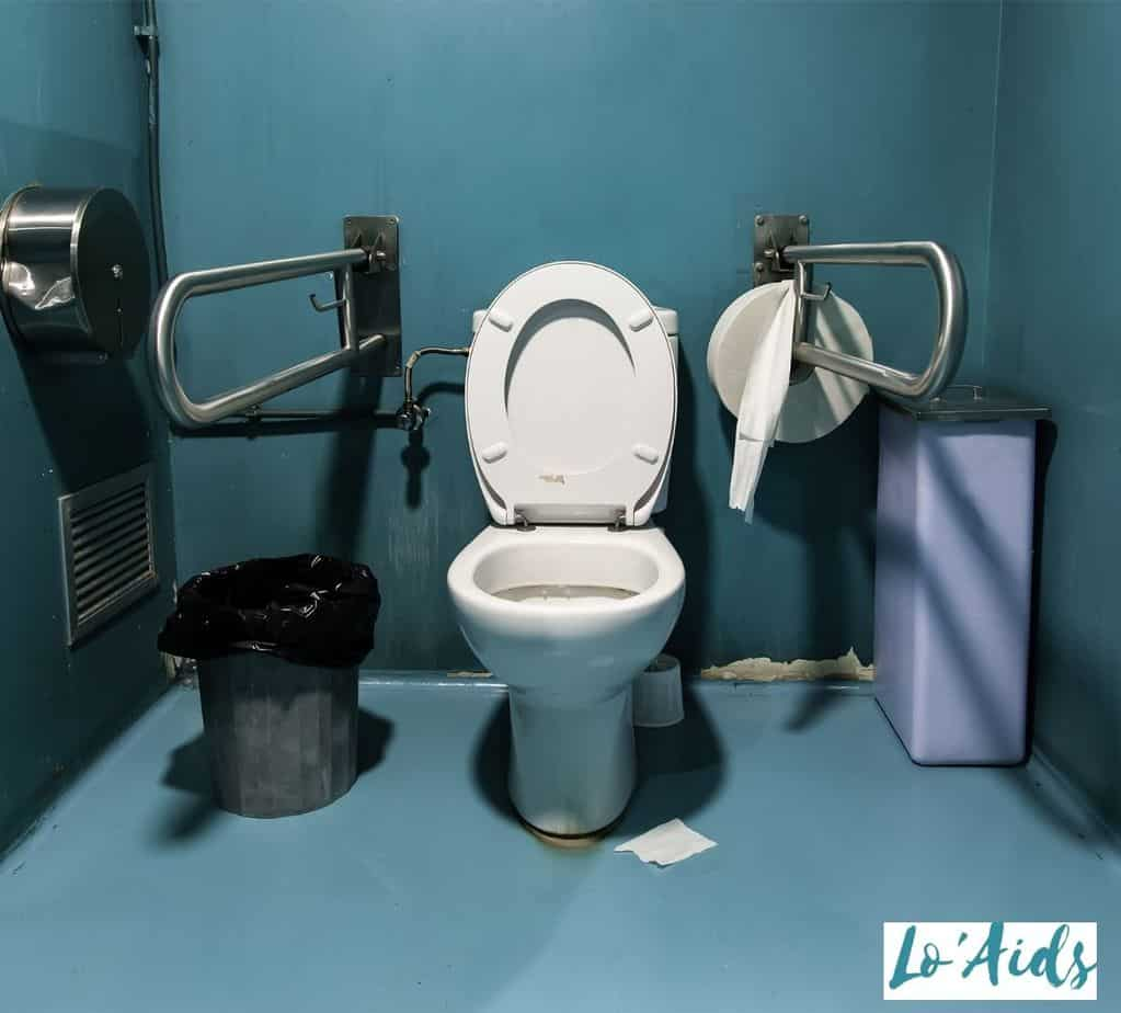 wheelchair accessible toilet